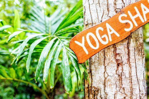 yoga writer